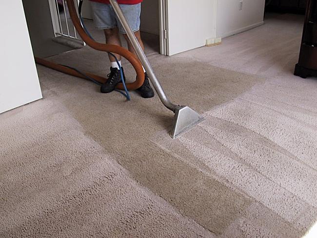 Best Carpet Cleaning Melbourne