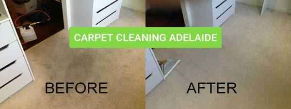 Same Day Carpet Cleaning Port Rickaby