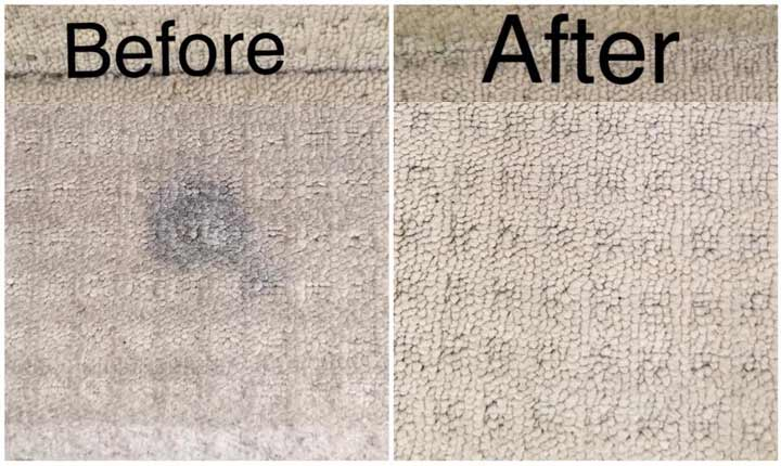 CARPET CLEANING Leda