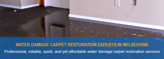 Water Damage Carpet Restoration Experts In Melbourne