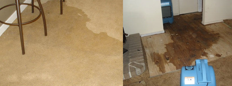 CARPET FLOOD WATER DAMAGE RESTORATION Elevated Plains