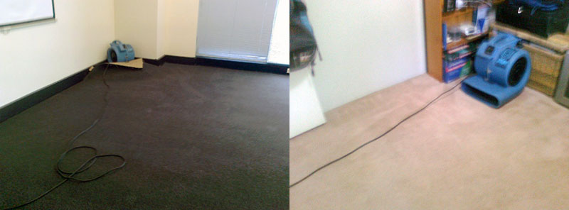 CARPET FLOOD WATER DAMAGE RESTORATION The Triangle