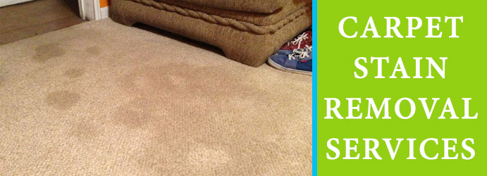 Carpet Stain Removal Services Mount Walker