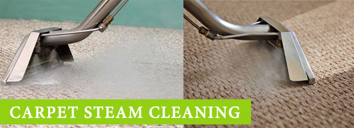 Carpet Steam Cleaning Services in West End