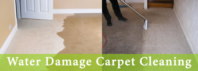 Water Damage Carpet Cleaning Services in Leslie