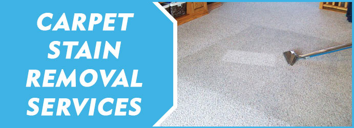 arpet Stain Removal Service
