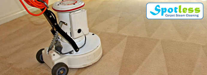 Carpet Dry Cleaning Dendy