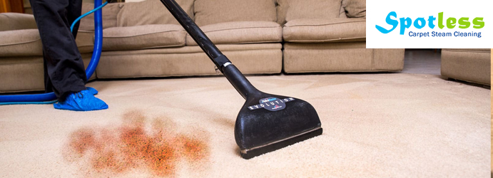Professional Carpet Stain Removal