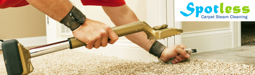 Carpet Repair Bellmount Forest