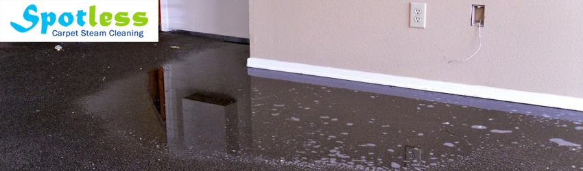Carpet Water Damage Repair
