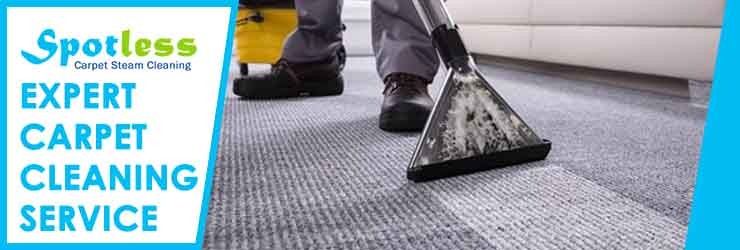 Expert Carpet Cleaning