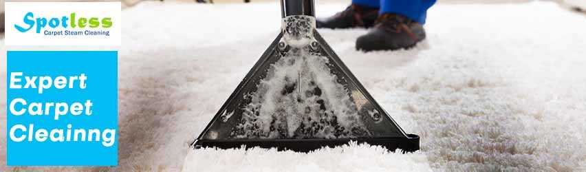 Expert Carpet Cleaning Waterfall