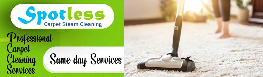 Best Carpet Cleaning Bushy Park