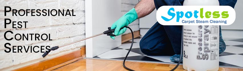 Best Pest Control Oxley