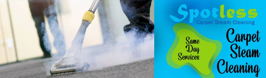 Carpet Steam Cleaning Saltwater River