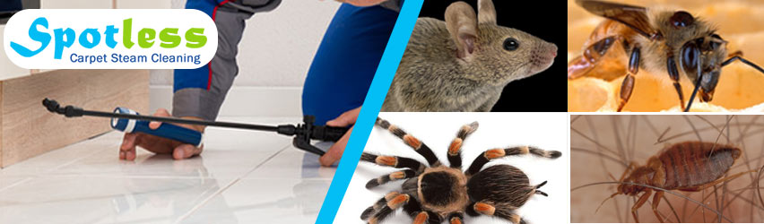 Expert Pest Control Oxley