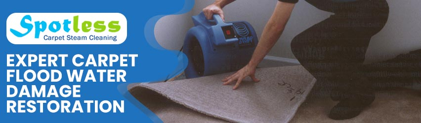 Expert Carpet Flood Water Damage Restoration
