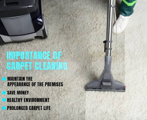 Importance Of Carpet Cleaning Services