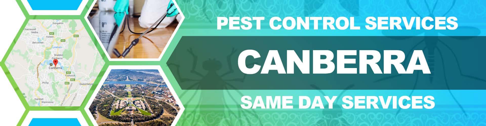 Pest Control Services Canberra