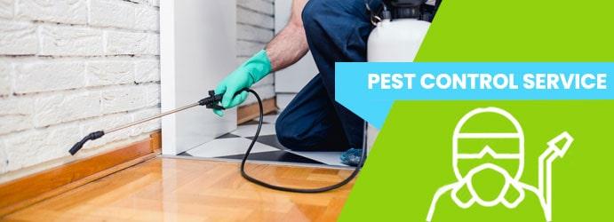 Pest Control Western Suburbs Melbourne