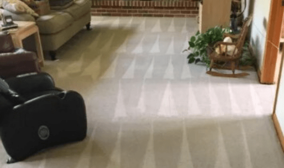 Carpet Steam Cleaning Services in Brisbane