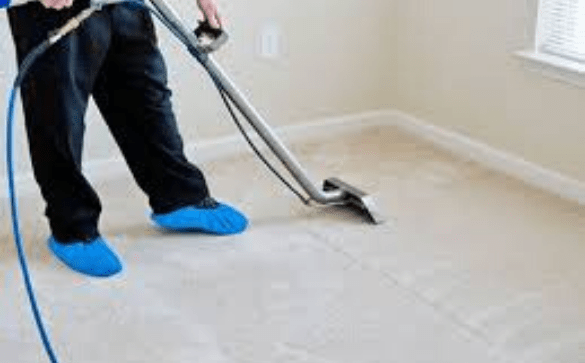 Spotless Carpet Cleaning Services Hobart