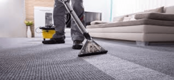 Best Carpet Cleaning Hobart
