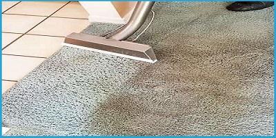 Carpet Mould Cleanup